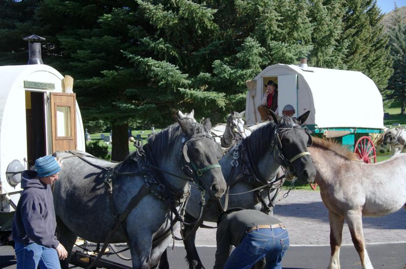 Lets hitch up the horses ,  head down the trail for all to see our Sheep Wagon