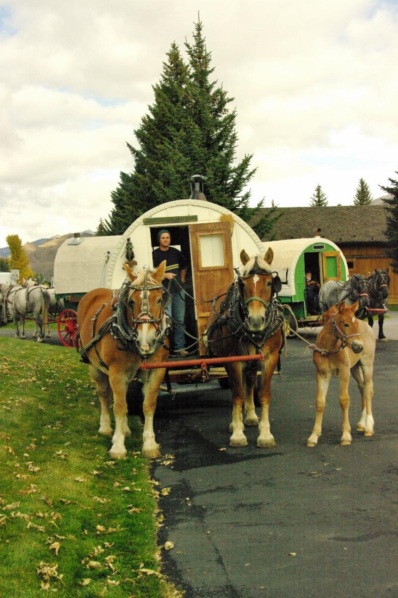 other horse drawn wagons show the old lokk of our wagon , blends right in